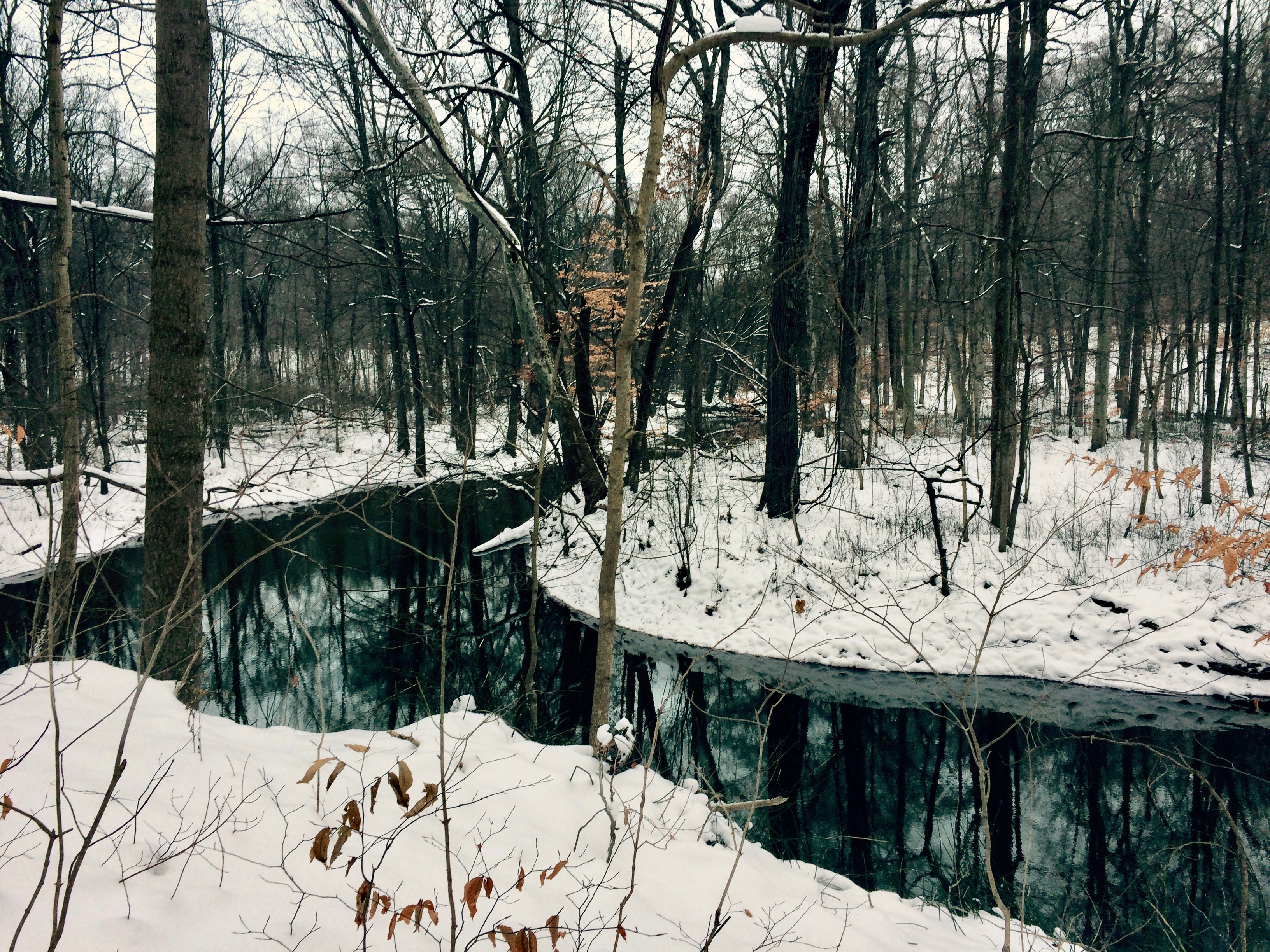 River with snow.jpg